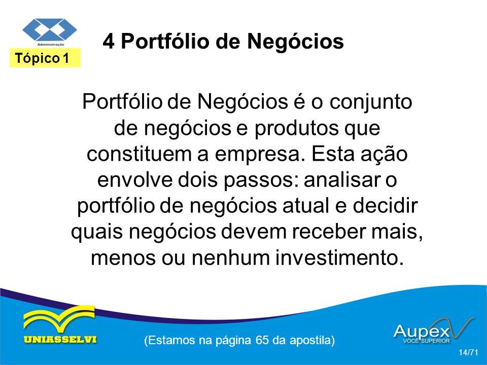 4 Portfólio de Negócios Portfólio de Negócios é o conjunto de negócios e produtos que constituem a empresa. Esta ação envolve dois passos: analisar o