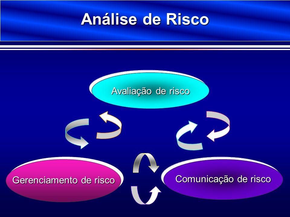 Análise de Risco Avaliação de risco Gerenciamento de risco Comunicação de risco