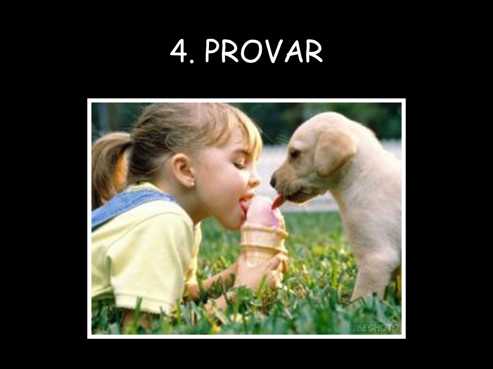 4. PROVAR