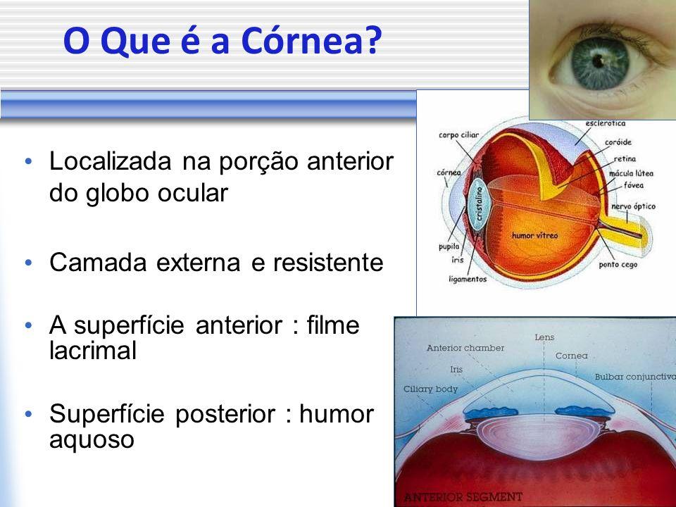 O Que é a Córnea? Localizada na porção anterior do globo ocular Camada externa e resistente A superfície anterior : filme lacrimal Superfície posterio