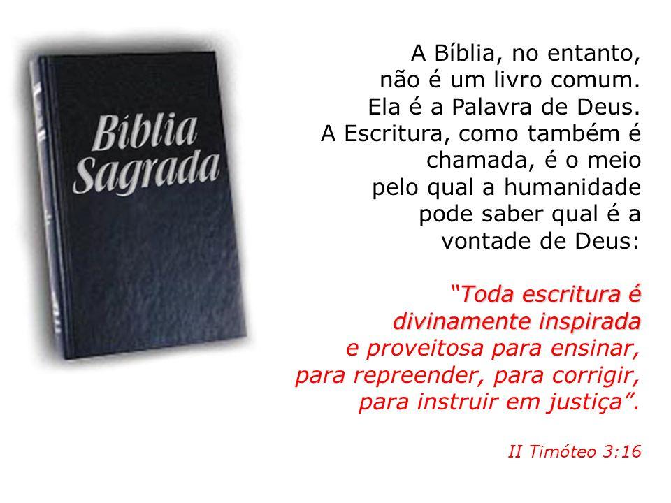 A Bíblia, no entanto, não é um livro comum. Ela é a Palavra de Deus. A Escritura, como também é chamada, é o meio pelo qual a humanidade pode saber qu