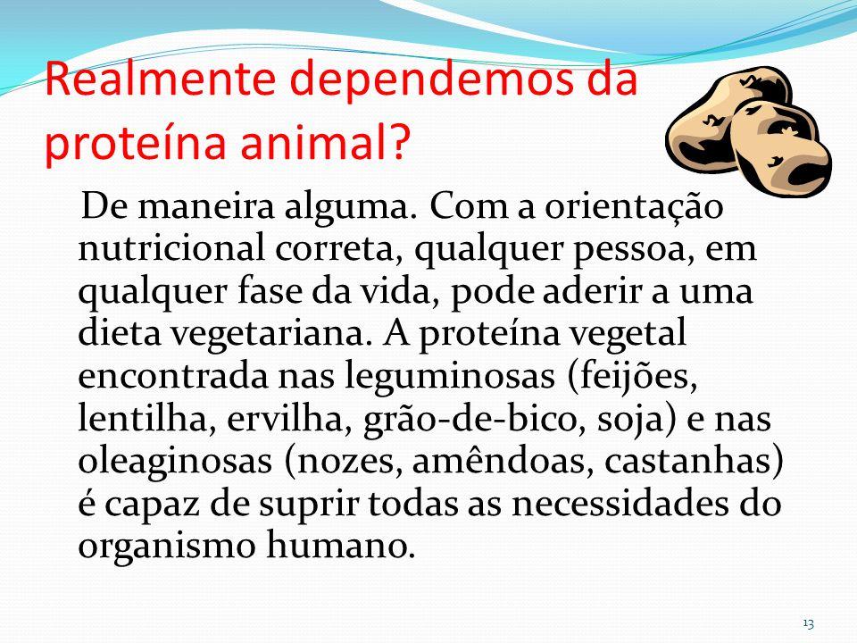 É mito ou verdade que sangue O necessita de proteína animal.