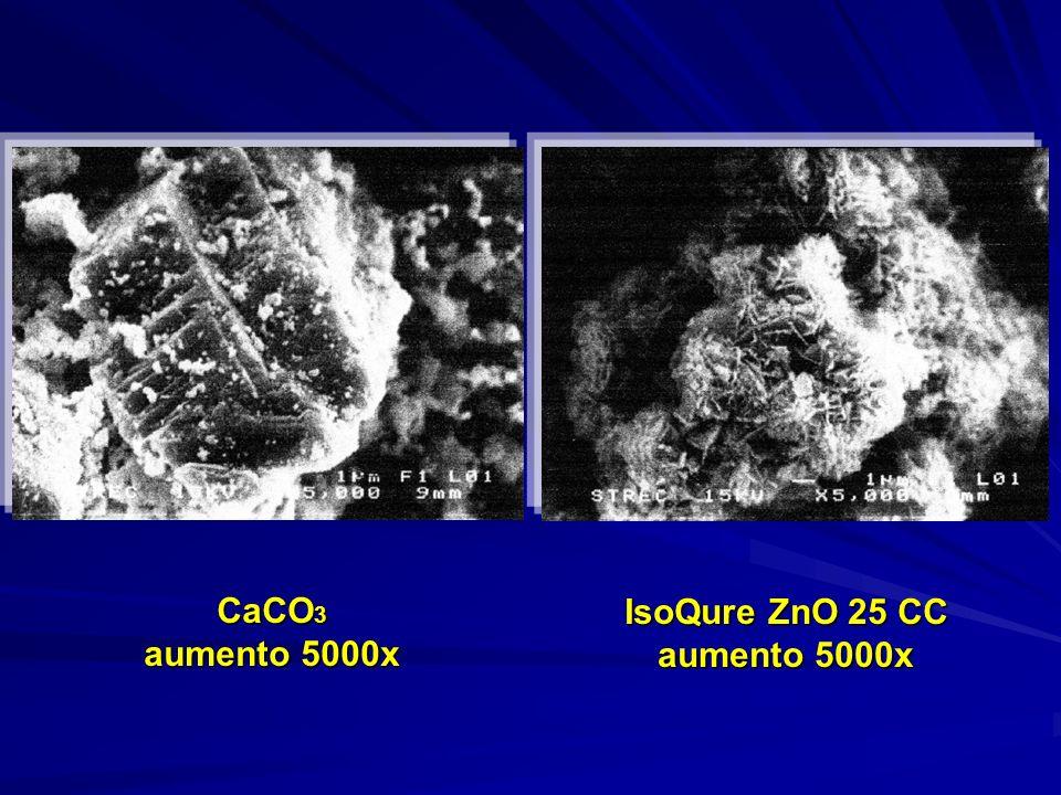 CaCO 3 aumento 5000x IsoQure ZnO 25 CC aumento 5000x