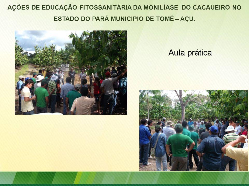 AÇÕES DE EDUCAÇÃO FITOSSANITÁRIA DA MONILÍASE DO CACAUEIRO NO ESTADO DO PARÁ MUNICIPIO DE TOMÉ – AÇU. Aula prática