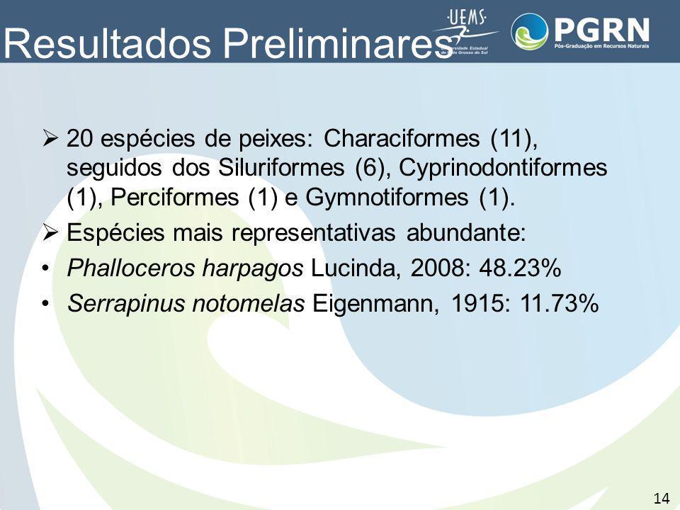 Resultados Preliminares 20 espécies de peixes: Characiformes (11), seguidos dos Siluriformes (6), Cyprinodontiformes (1), Perciformes (1) e Gymnotifor