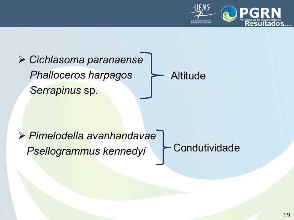 Cichlasoma paranaense Phalloceros harpagos Serrapinus sp. Pimelodella avanhandavae Psellogrammus kennedyi Altitude Condutividade Resultados… 19