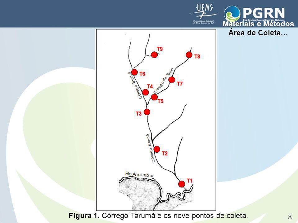 Figura 1. Córrego Tarumã e os nove pontos de coleta. Materiais e Métodos Área de Coleta… 8