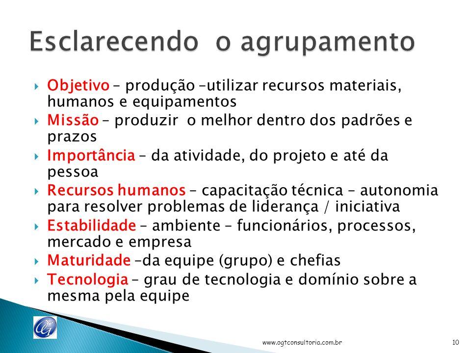 Agrupar atividades ObjetivoMissão Importânc ia RH Estabilid ade Maturida de Tecnolog ia www.ogtconsultoria.com.br9