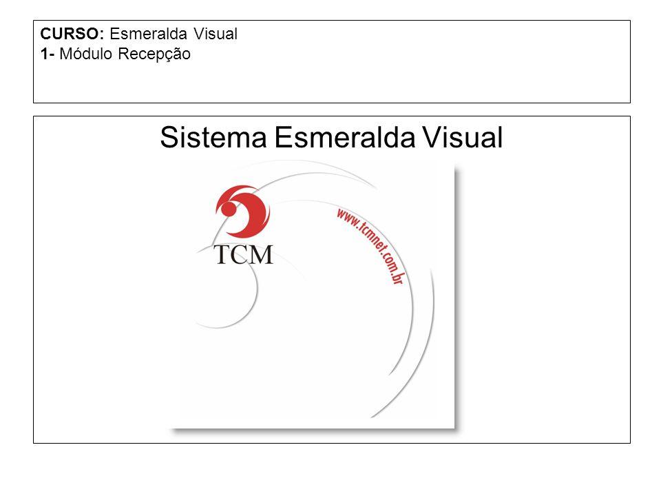 CURSO: Esmeralda Visual 1- Módulo Recepção Sistema Esmeralda Visual