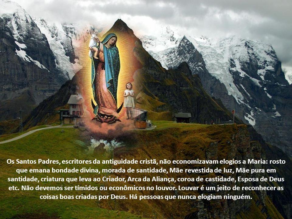 Os Santos Padres, escritores da antiguidade cristã, não economizavam elogios a Maria: rosto que emana bondade divina, morada de santidade, Mãe revestida de luz, Mãe pura em santidade, criatura que leva ao Criador, Arca da Aliança, coroa de castidade, Esposa de Deus etc.