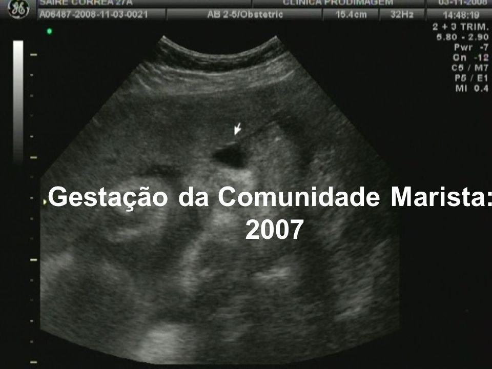Gestação da Comunidade Marista: 2007