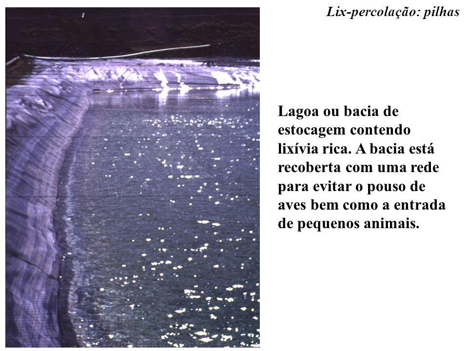 Lagoa ou bacia de estocagem contendo lixívia rica. A bacia está recoberta com uma rede para evitar o pouso de aves bem como a entrada de pequenos anim