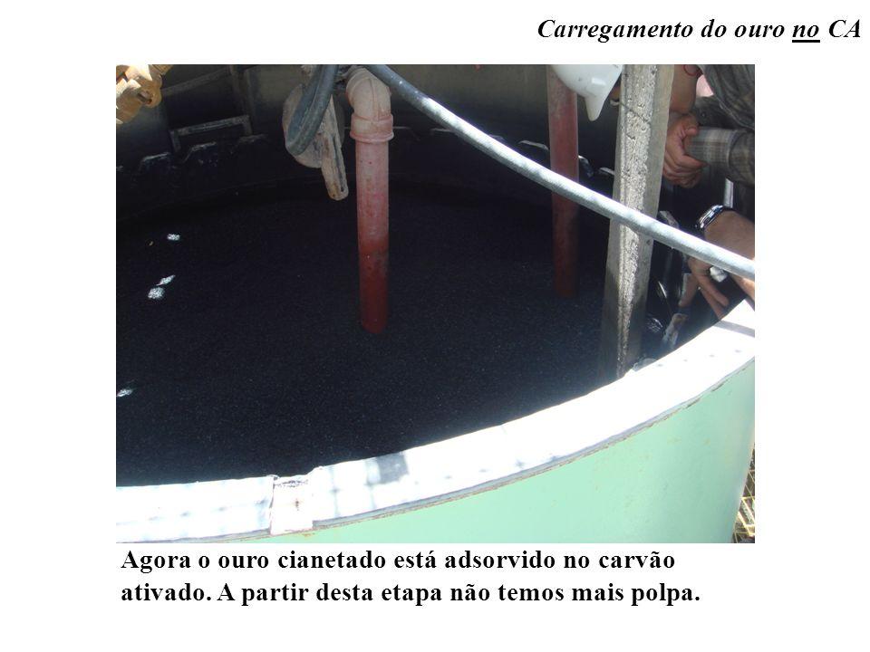 Carregamento do ouro no CA Agora o ouro cianetado está adsorvido no carvão ativado. A partir desta etapa não temos mais polpa.