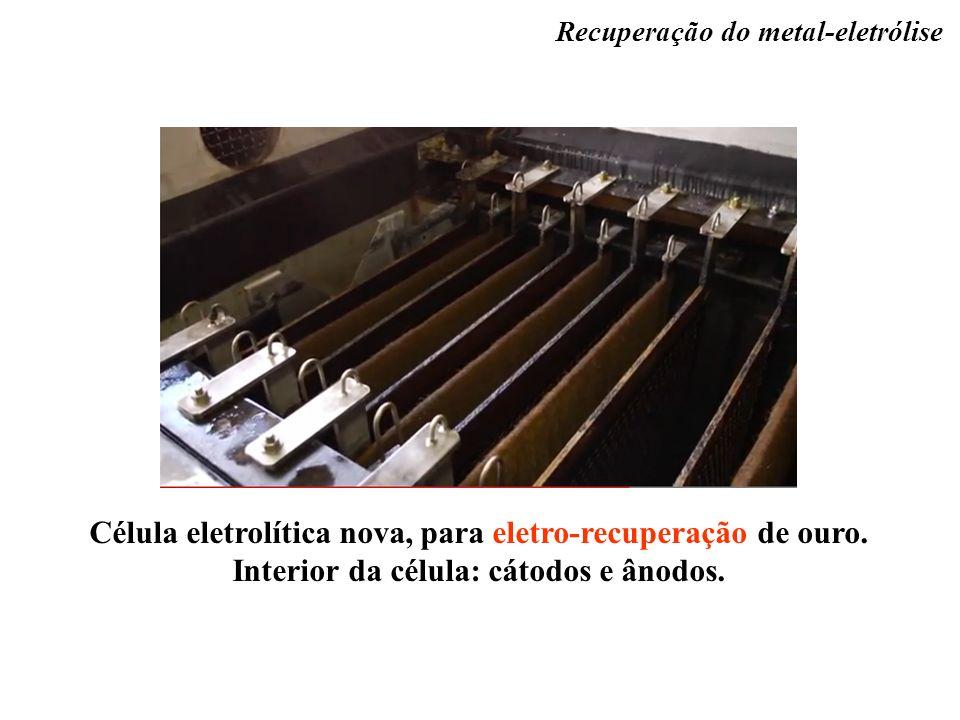 Célula eletrolítica nova, para eletro-recuperação de ouro. Interior da célula: cátodos e ânodos. Recuperação do metal-eletrólise