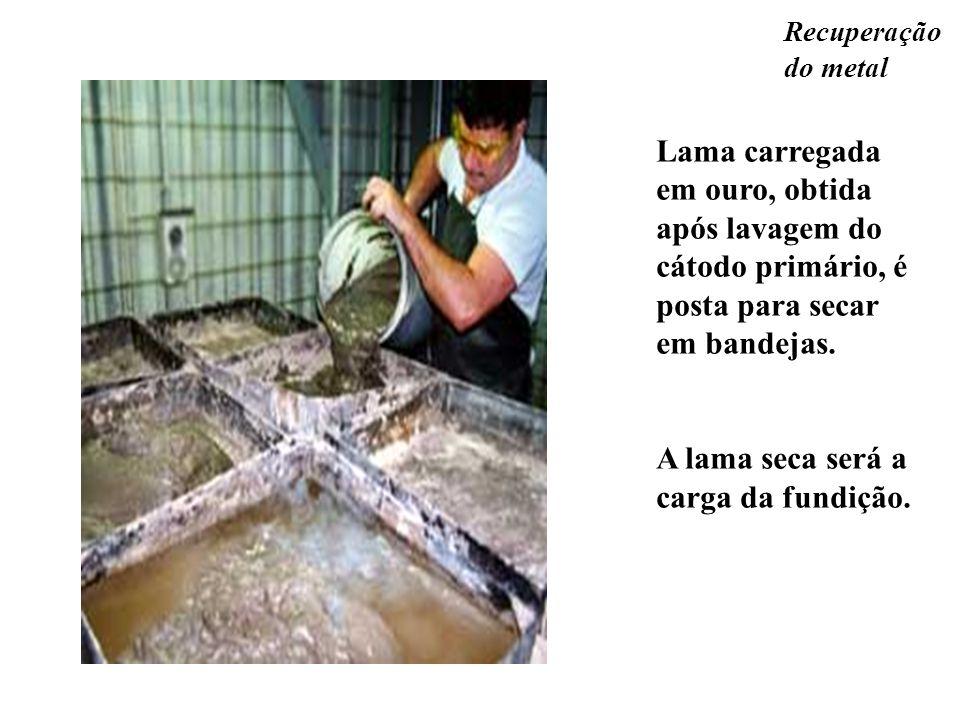 Lama carregada em ouro, obtida após lavagem do cátodo primário, é posta para secar em bandejas. A lama seca será a carga da fundição.