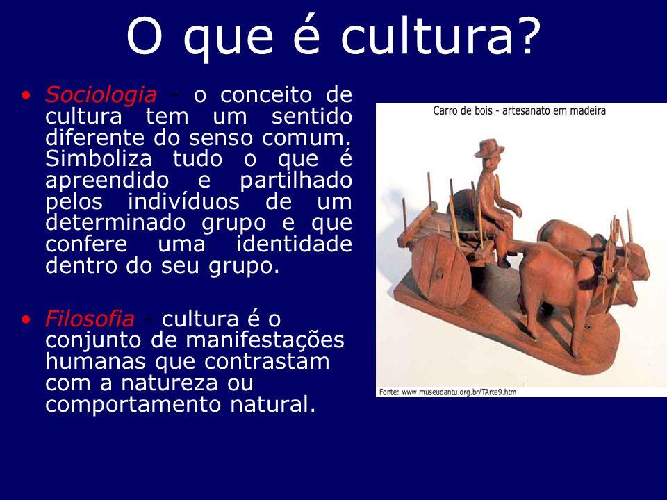 O que é cultura? Sociologia - o conceito de cultura tem um sentido diferente do senso comum. Simboliza tudo o que é apreendido e partilhado pelos indi