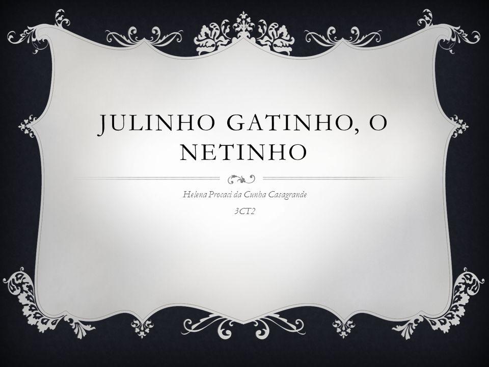 JULINHO GATINHO, O NETINHO Helena Procaci da Cunha Casagrande 3CT2
