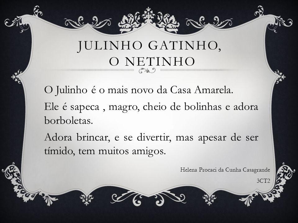 JULINHO GATINHO, O NETINHO O Julinho é o mais novo da Casa Amarela. Ele é sapeca, magro, cheio de bolinhas e adora borboletas. Adora brincar, e se div