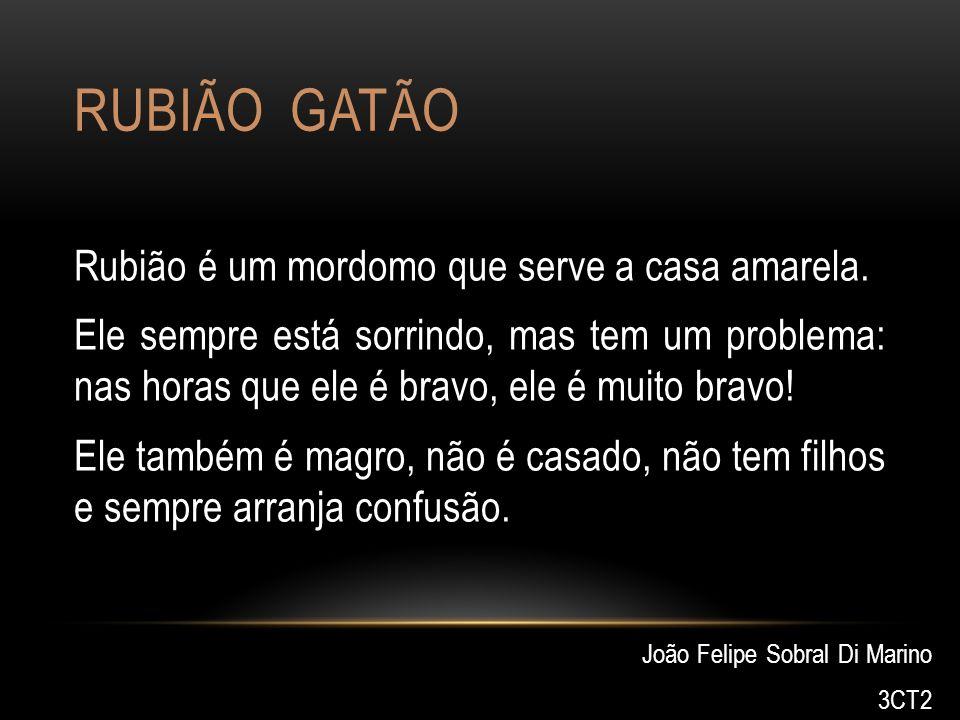 RUBIÃO GATÃO Rubião é um mordomo que serve a casa amarela. Ele sempre está sorrindo, mas tem um problema: nas horas que ele é bravo, ele é muito bravo