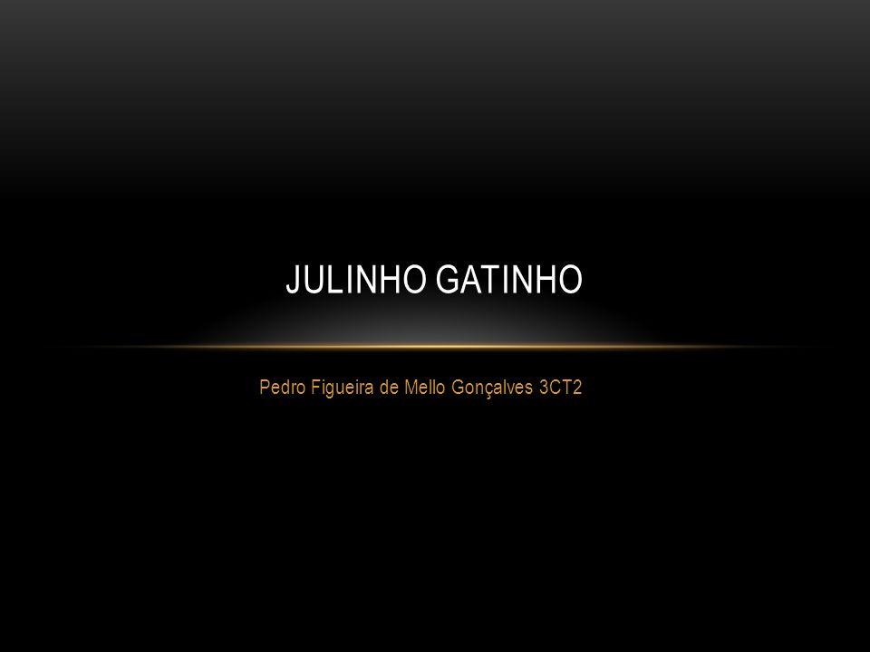 Pedro Figueira de Mello Gonçalves 3CT2 JULINHO GATINHO