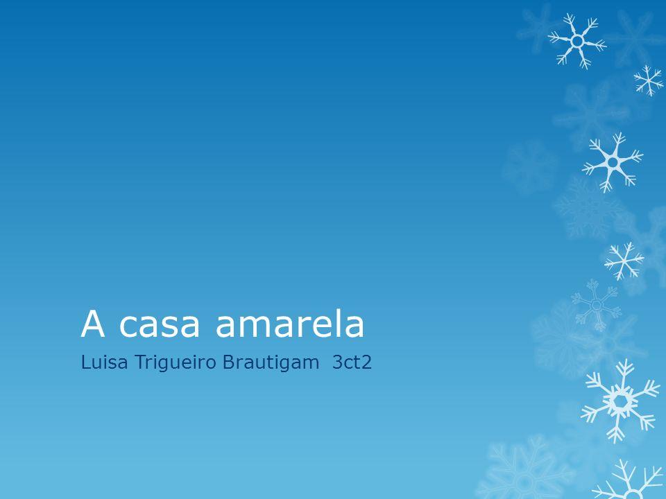 A casa amarela Luisa Trigueiro Brautigam 3ct2