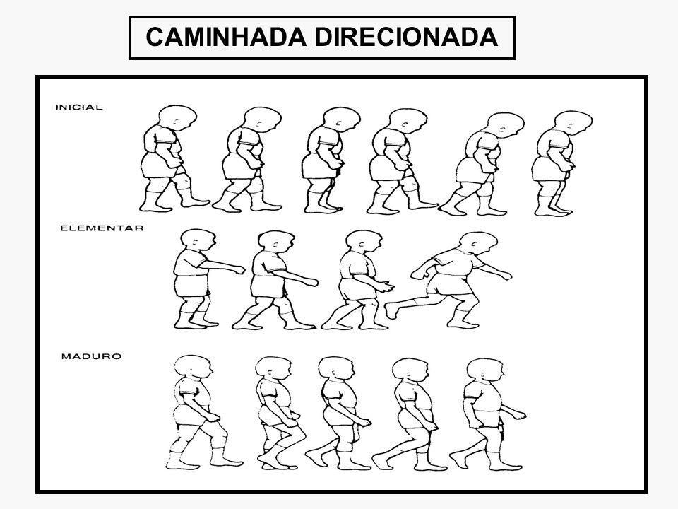 CAMINHADA DIRECIONADA