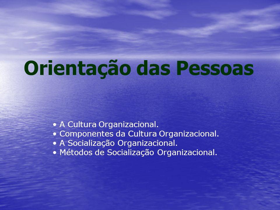 Orientação das Pessoas A Cultura Organizacional. Componentes da Cultura Organizacional.