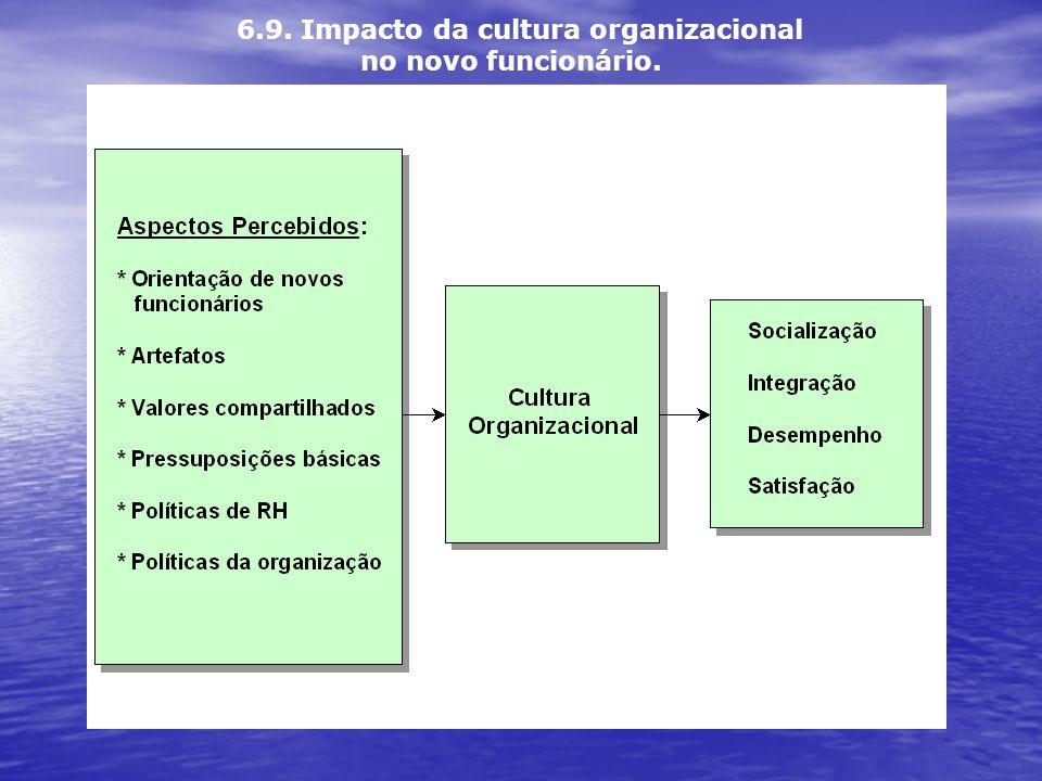 6.9. Impacto da cultura organizacional no novo funcionário.