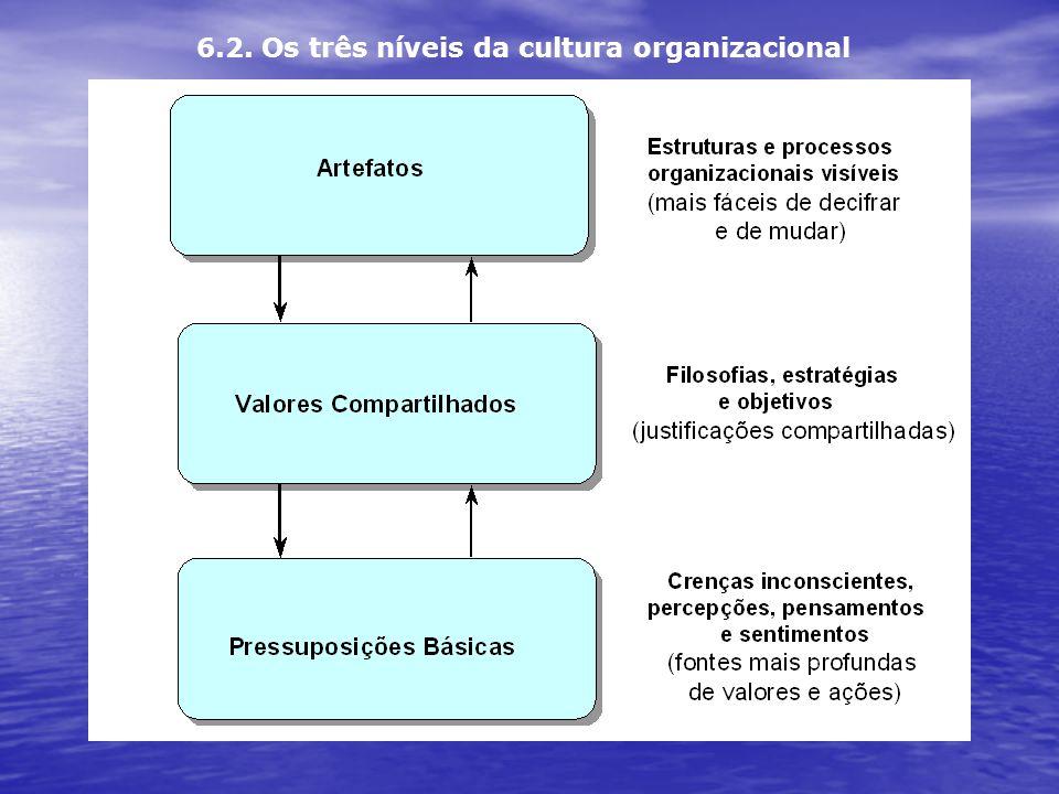 6.2. Os três níveis da cultura organizacional