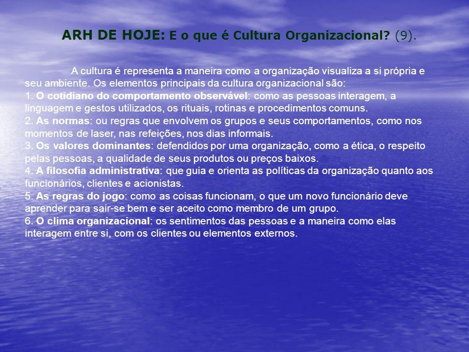 A cultura é representa a maneira como a organização visualiza a si própria e seu ambiente.