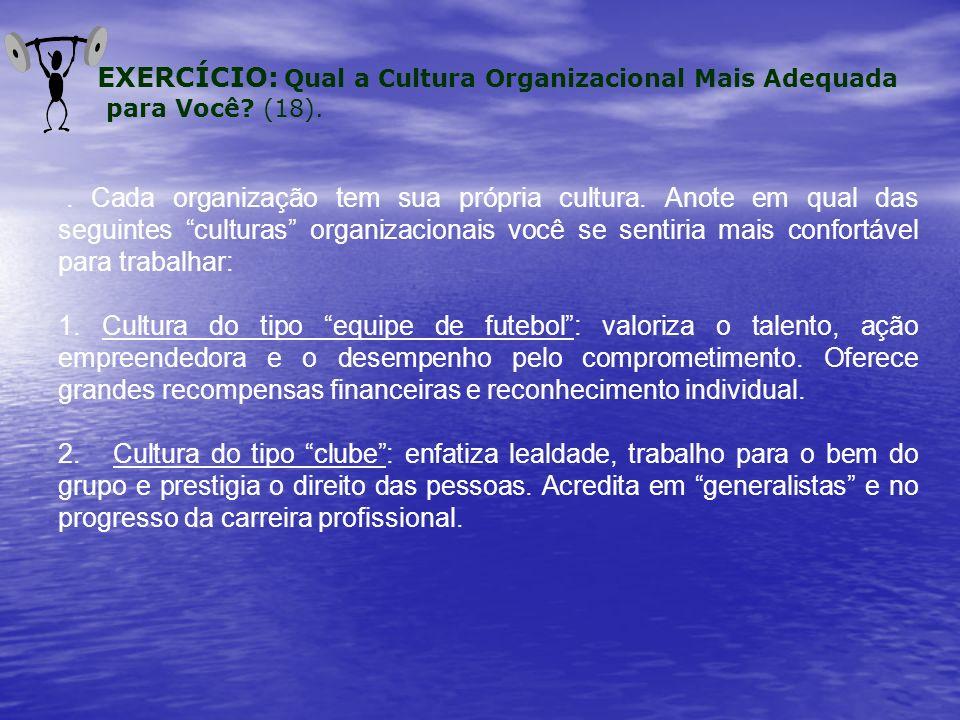 Cada organização tem sua própria cultura.