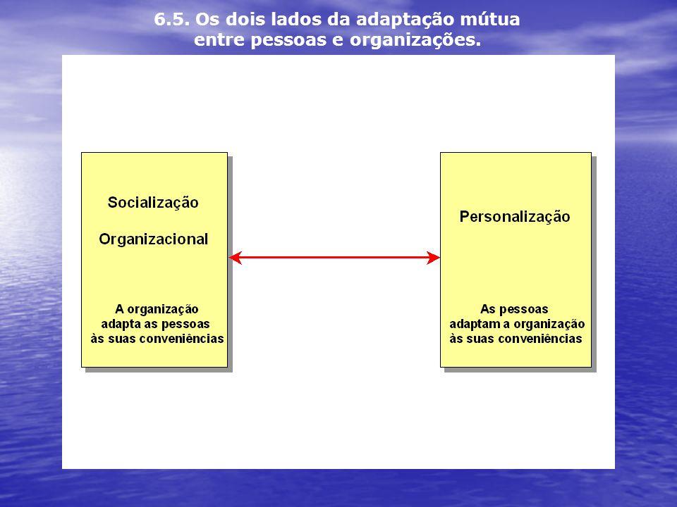 6.5. Os dois lados da adaptação mútua entre pessoas e organizações.