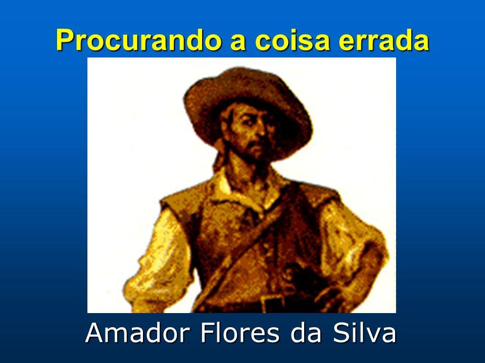 Procurando a coisa errada Amador Flores da Silva