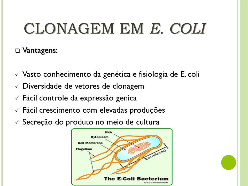 CLONAGEM EM E. COLI Vantagens: Vantagens: Vasto conhecimento da genética e fisiologia de E. coli Diversidade de vetores de clonagem Fácil controle da
