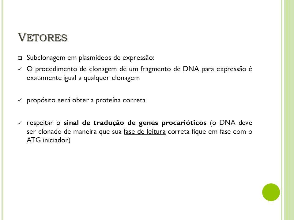 V ETORES Subclonagem em plasmideos de expressão: O procedimento de clonagem de um fragmento de DNA para expressão é exatamente igual a qualquer clonag
