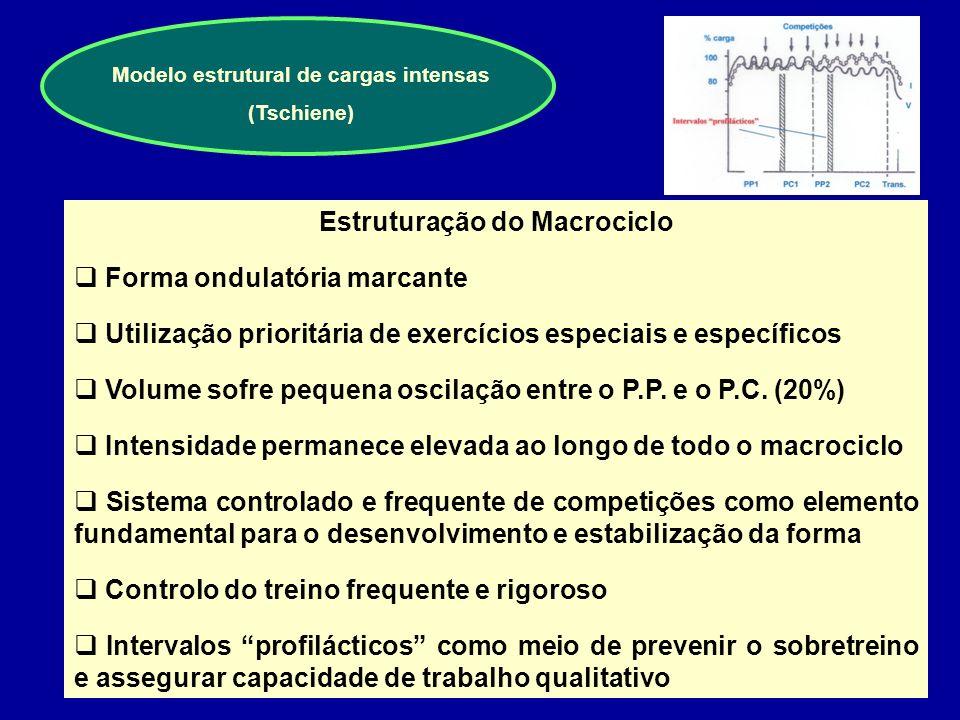 Modelo estrutural de cargas intensas (Tschiene)