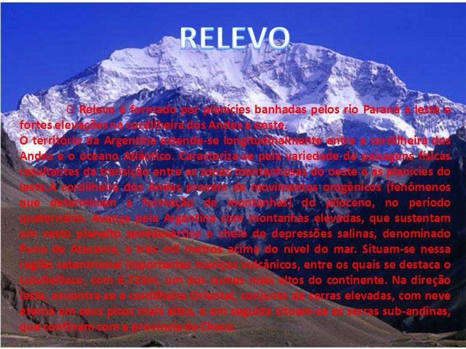 O Relevo é formado por planícies banhadas pelos rio Paraná a leste e fortes elevações na cordilheira dos Andes a oeste.