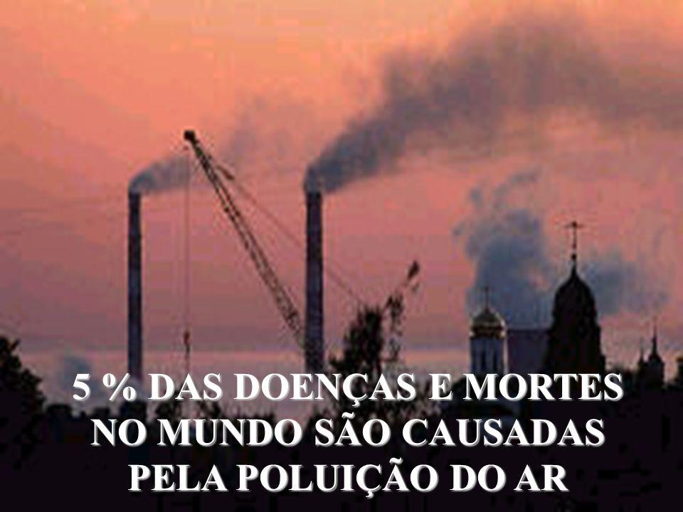 5 % DAS DOENÇAS E MORTES NO MUNDO SÃO CAUSADAS PELA POLUIÇÃO DO AR