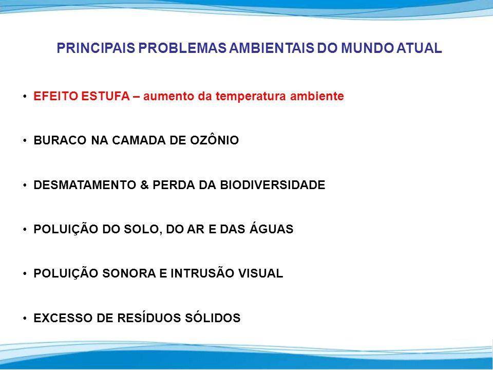 PRINCIPAIS PROBLEMAS AMBIENTAIS DO MUNDO ATUAL EFEITO ESTUFA – aumento da temperatura ambiente BURACO NA CAMADA DE OZÔNIO DESMATAMENTO & PERDA DA BIODIVERSIDADE POLUIÇÃO DO SOLO, DO AR E DAS ÁGUAS POLUIÇÃO SONORA E INTRUSÃO VISUAL EXCESSO DE RESÍDUOS SÓLIDOS