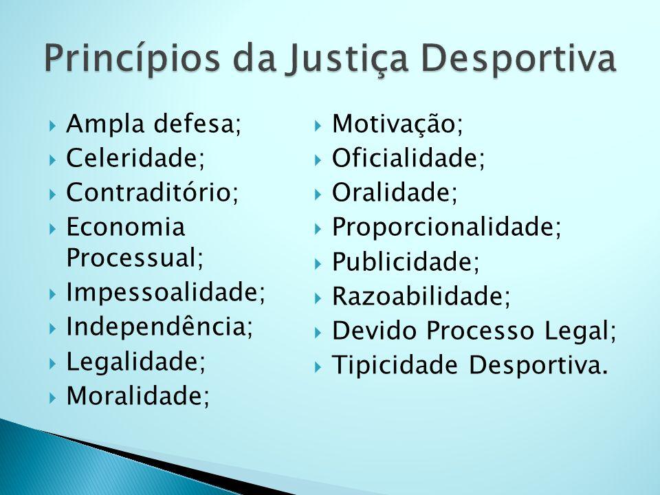 Ampla defesa; Celeridade; Contraditório; Economia Processual; Impessoalidade; Independência; Legalidade; Moralidade; Motivação; Oficialidade; Oralidad