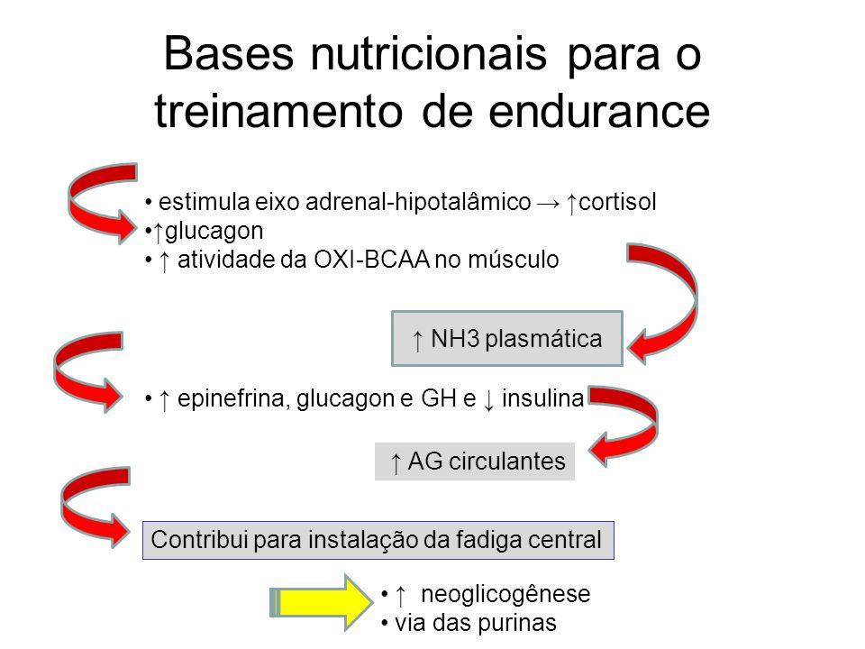 Bases nutricionais para o treinamento de endurance estimula eixo adrenal-hipotalâmico cortisol glucagon atividade da OXI-BCAA no músculo NH3 plasmátic