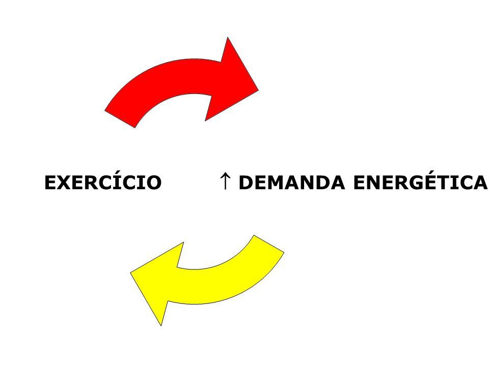 Exercícios alta intensidade curta duração: 1ª fonte ATP ADP Pi 2ª fonte CP (3 a 4 x > ATP) Ressíntese de ADP + Pi ATP – enzima creatina quinase COMBUSTÍVEIS NECESSÁRIOS PARA O MÚSCULO Metabolismo Trabalho ATP ADP + Pi