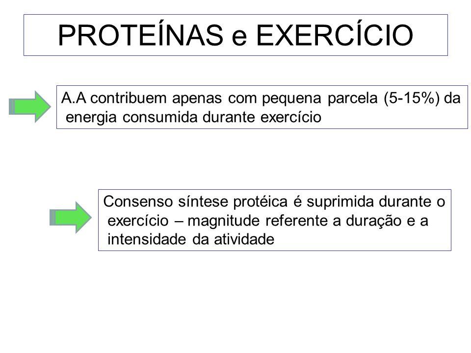 PROTEÍNAS e EXERCÍCIO Consenso síntese protéica é suprimida durante o exercício – magnitude referente a duração e a intensidade da atividade A.A contr