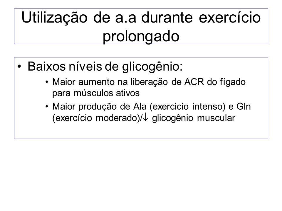 Utilização de a.a durante exercício prolongado Baixos níveis de glicogênio: Maior aumento na liberação de ACR do fígado para músculos ativos Maior pro