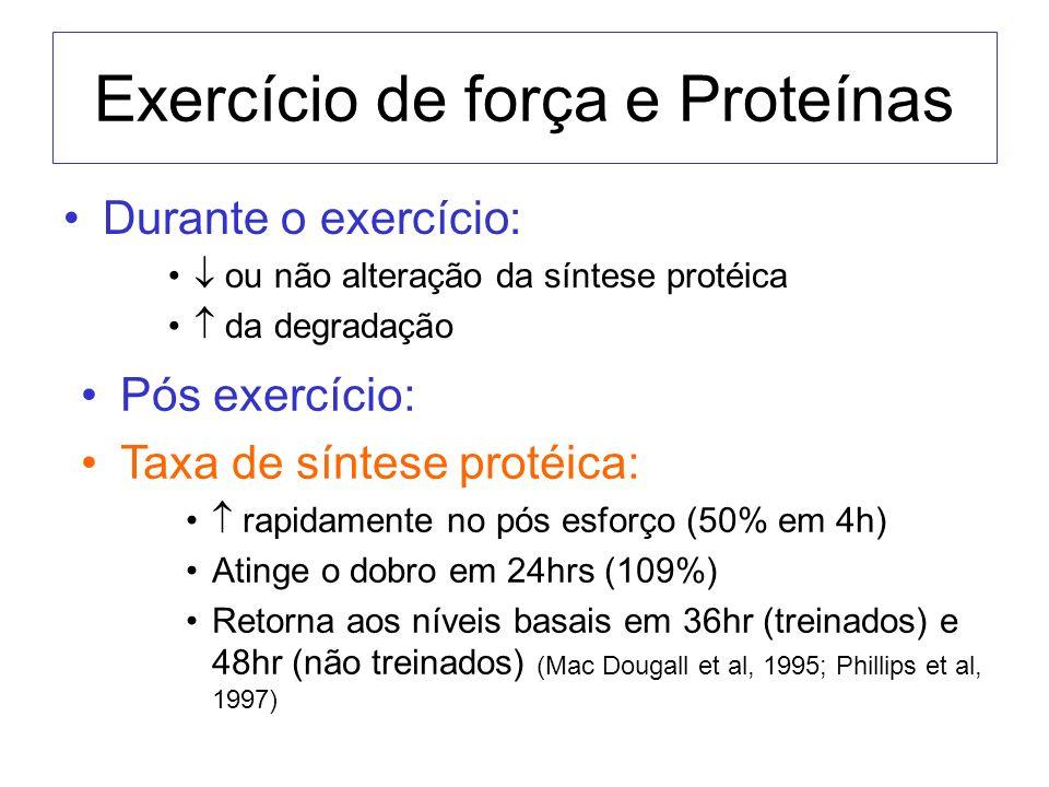 Exercício de força e Proteínas Durante o exercício: ou não alteração da síntese protéica da degradação Pós exercício: Taxa de síntese protéica: rapida