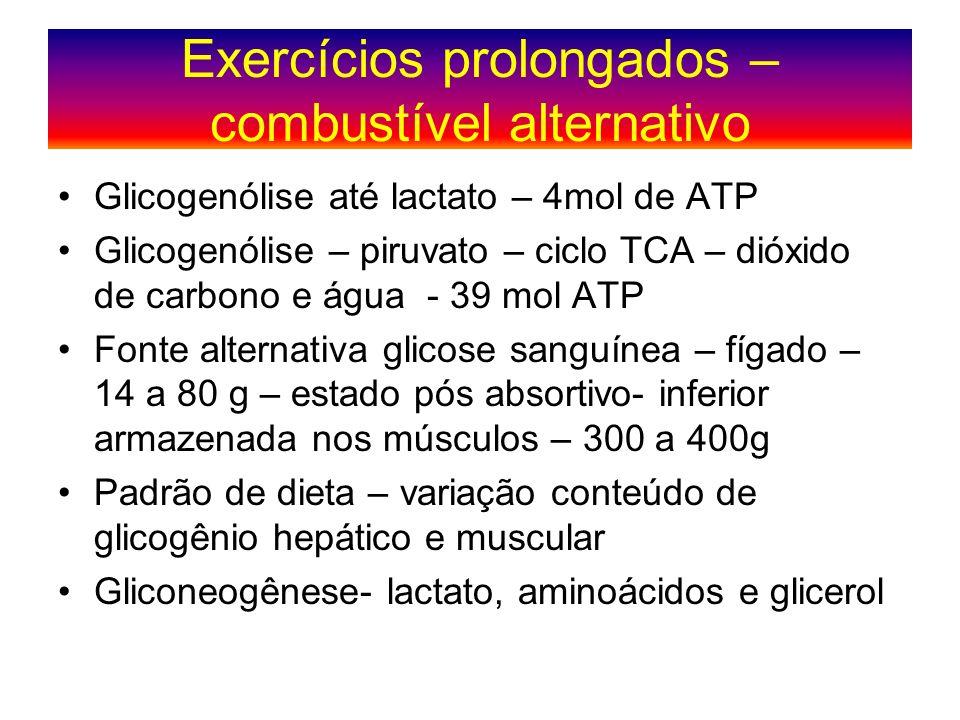 Exercícios prolongados – combustível alternativo Glicogenólise até lactato – 4mol de ATP Glicogenólise – piruvato – ciclo TCA – dióxido de carbono e á