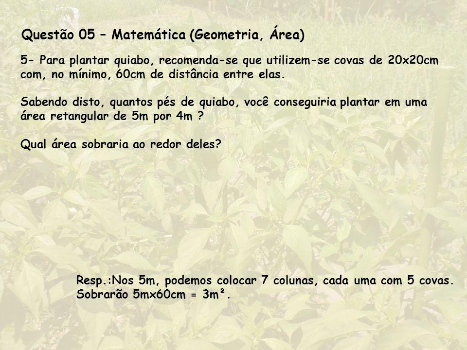Questão 05 – Matemática (Geometria, Área) 5- Para plantar quiabo, recomenda-se que utilizem-se covas de 20x20cm com, no mínimo, 60cm de distância entr