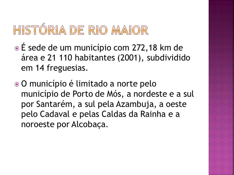 É sede de um município com 272,18 km de área e 21 110 habitantes (2001), subdividido em 14 freguesias. O município é limitado a norte pelo município d