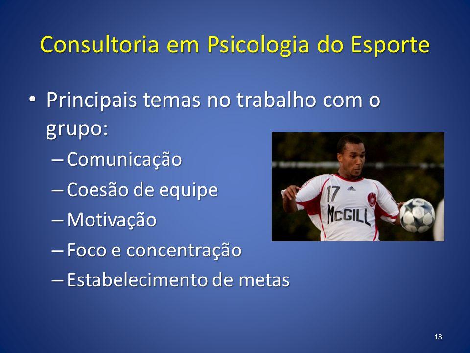 Consultoria em Psicologia do Esporte Principais temas no trabalho com o grupo: Principais temas no trabalho com o grupo: – Comunicação – Coesão de equipe – Motivação – Foco e concentração – Estabelecimento de metas 13