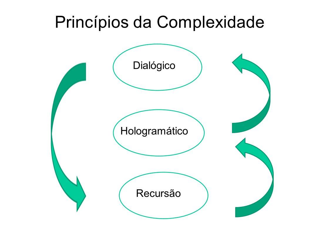 Princípios da Complexidade Recursão Hologramático Dialógico